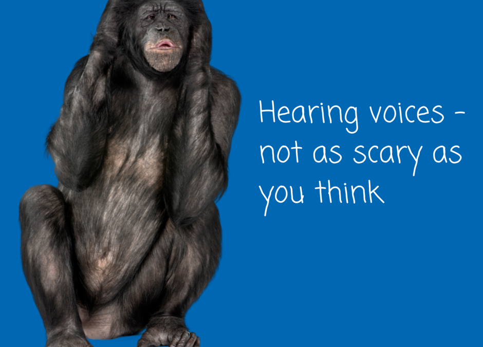 Mental Health Awareness week – Hearing Voices